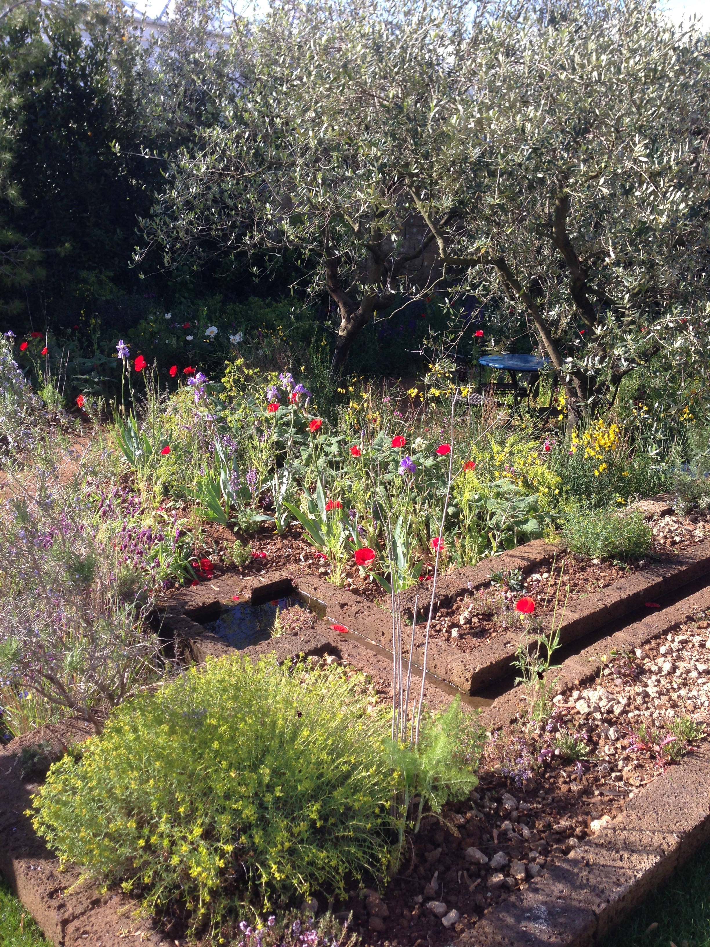 """Mijn favoriet: """"A Perfumer's Garden in Grasse"""", mediterrane showtuin van tuinontwerper James Basson. De tuin liet zich niet goed fotograferen, maar wat was ik graag aan dat blauwe Franse tafeltje onder die olfijfbomen gaan zitten, tussen de lavendel en de klaprozen."""